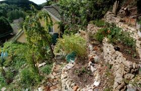 Rack Hill garden